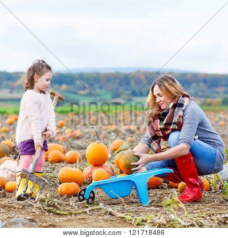 Little kid girl and mother having fun on pumkin field