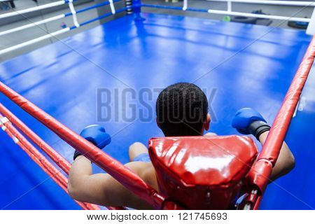 Back view portrait of a male boxer sitting in the corner of boxing ring
