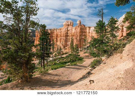 Hiking Trail At Bryce Canyon National Park, Utah, Usa
