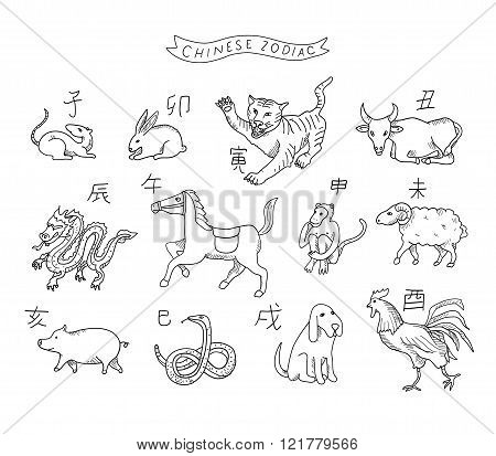 Chinese zodiac in vector isolated  on a white background.