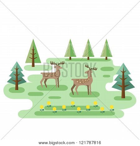 Two Deers In Forest