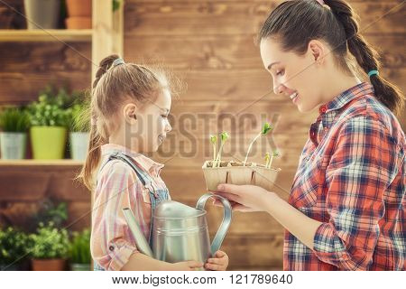 Cute child girl helps her mother to care for plants. Happy family engaged in gardening in the backyard. Mother and her daughter watering a growing sprout. Spring concept, nature and care.