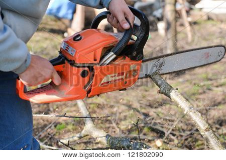 A Man Is Using An Orange Chainsaw To Cut Tree Branches Lying On The Ground