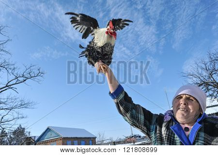 An Elderly Woman Shows Her Big Cock.