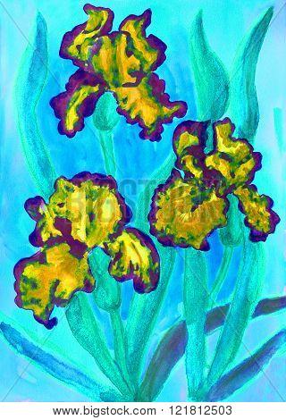 three yellow irises on blue background, painting