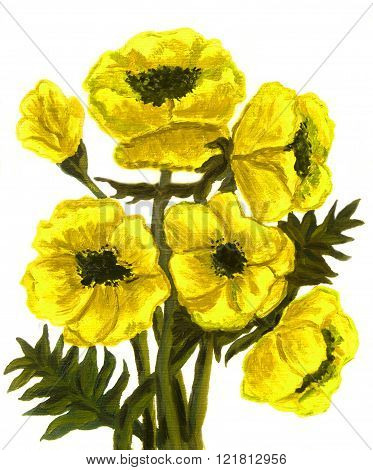 Hand painted picture oil painting yellow poppies on white background vertical.