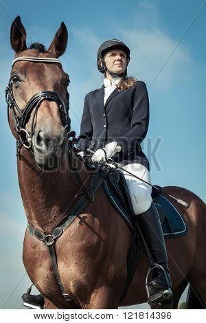 Jockey girl sitting on a horse on