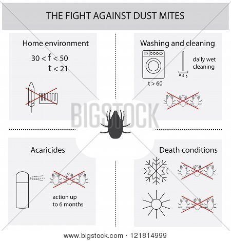Infographics on the fight against dust mites. Dust mites. Methods of dealing with dust mites.