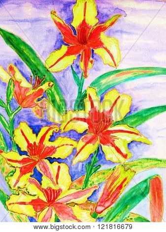 Daily lilies of yellow and red colours, watercolor painting