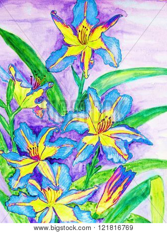 painting, watercolours, blue and yellow colour daily lilies.