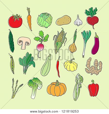 Set of hand drawn vegetables. Doodles, vector illustration. Isolated.