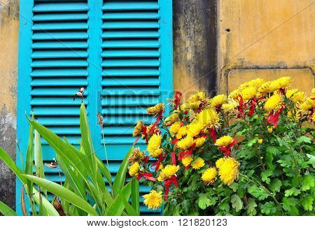 Yellow flowers and window blinds colorful house background
