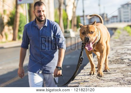 Man Walking With His Dog.