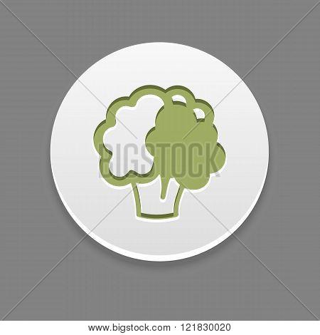 Cauliflower Icon. Vegetable Vector Illustration