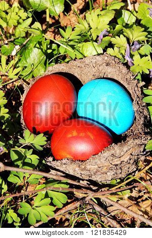 Painted Eggs In The Nest
