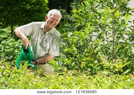 Happy To Cultivate Plants