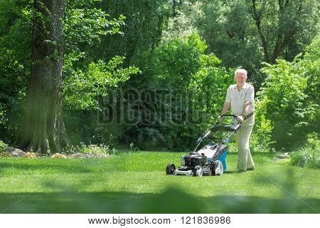 Elderly gardener is using lawnmower to mown grass