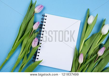 fresh tulip bouquet and blank white notebook