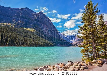 The picturesque promenade at Lake Louise. The emerald waters of the lake surrounded by mountains, glaciers and pine forests