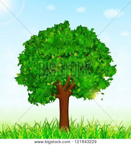 Green Landscape With Tree And Grass Background