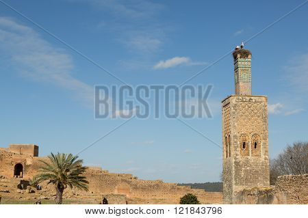 storks nesting on the top of a minaret in the Islamic complex of the ancient Chellah in Rabat, Morocco