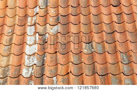 Aged tiled roof partly covered with lichen