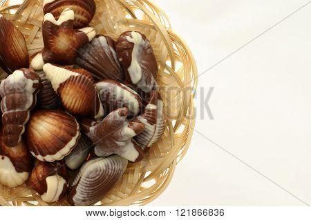 Chocolate Candy Shaped Sea Shells