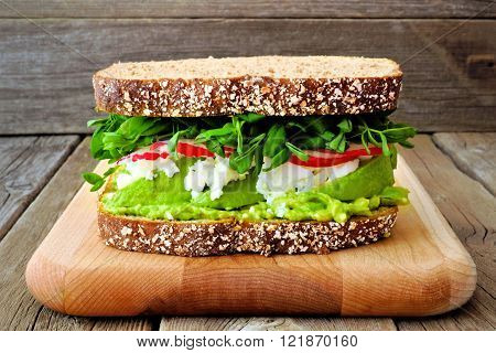 Superfood Sandwich With Avocado, Egg Whites, Radish And Pea Shoots On Whole Grain Bread Against A Ru