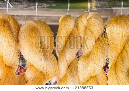 Golden raw silk is hanging for ready to made a silk.