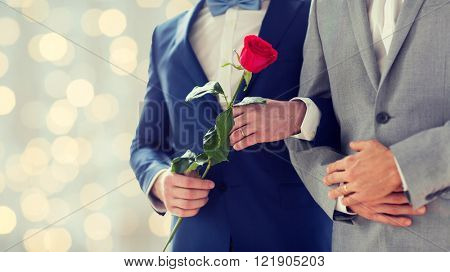 people, homosexuality, same-sex marriage and love concept - close up of happy male gay couple with red rose flower holding hands on wedding holidays lights background