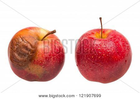 Dozy red apple as comparison to fresh red apple
