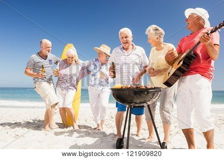 Senior friends having a barbecue on the beach