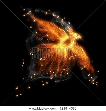 burning fiery bird flies on a black background