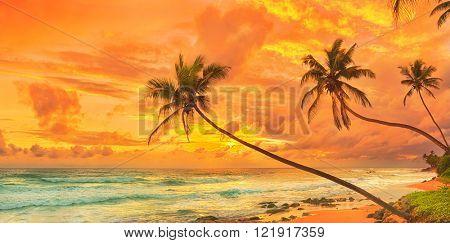 Sunset over the sea. Sri Lanka. Panorama