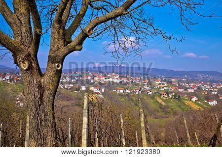 Town of Sveti Ivan Zelina in Prigorje Croatia