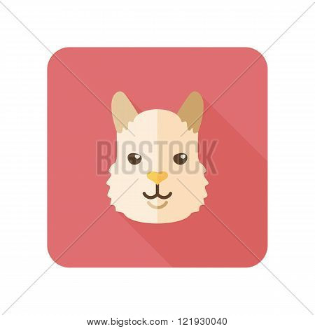 Lhama alpaca guanaco flat icon. Animal head vector symbol eps 10