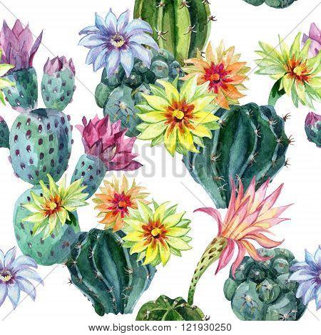 Watercolor seamless cactus pattern. Cacti hand painted illustration