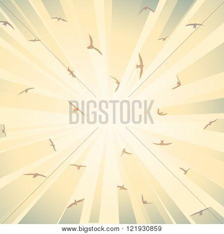 Square illustration birds in rays of bright sun.