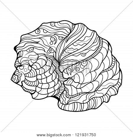 Shell helix coloring book for adults vector illustration. Anti-stress coloring for adult. Zentangle style. Black and white lines. Lace pattern