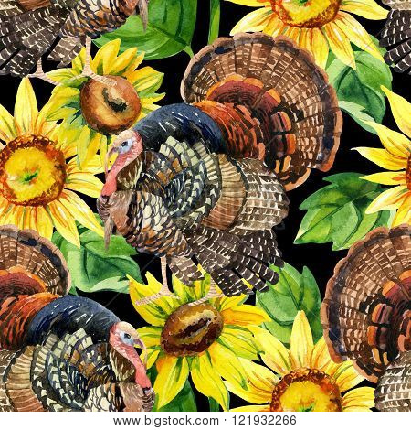Turkey bird with sunflowers illustration. Watercolor turkey seamless pattern on the black background