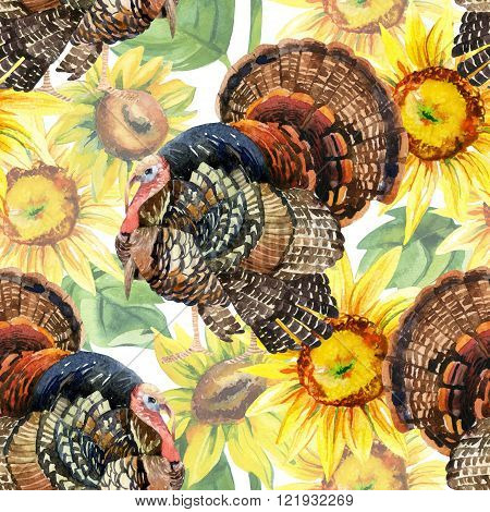 Turkey bird with sunflowers illustration. Watercolor turkey seamless pattern on the white background