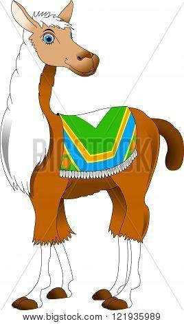 Beautiful llama with blue eyes and white mane