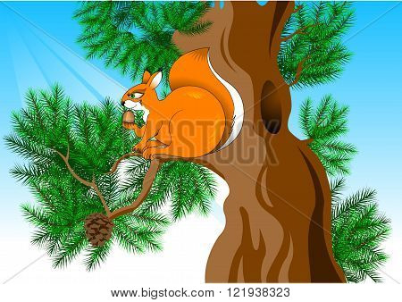 funny red squirrel found a large walnut vector