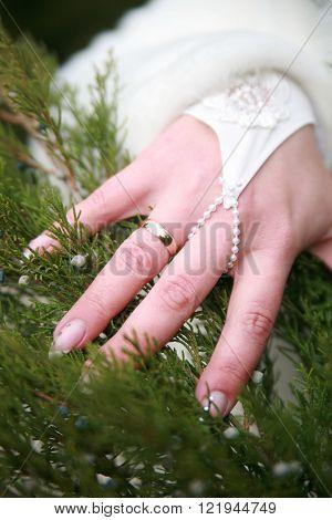 wedding ring on bride's finger on the background of juniper