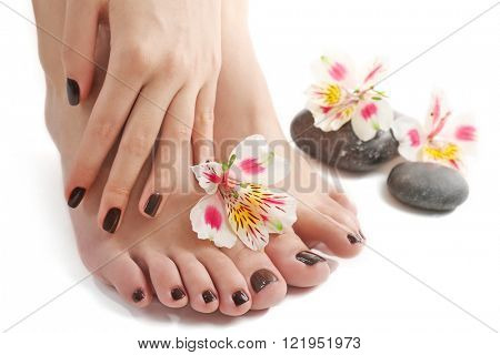 Manicured female feet and hand with spa stones and flowers isolated on white