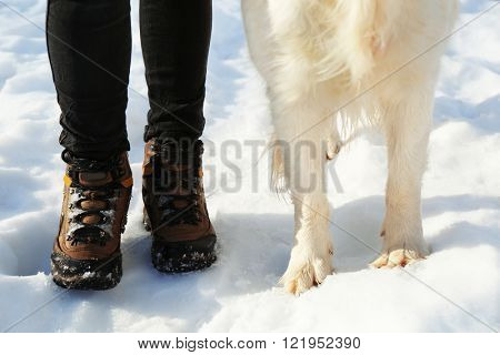 Feet of golden retriever and mistress outdoors in winter