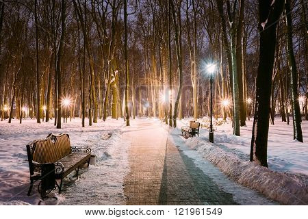 Two Path, Way in Snowy city park in light of lanterns at evening