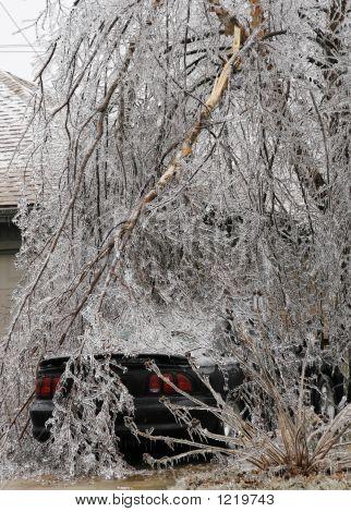 Car Under Ice Vertical
