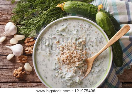 Bulgarian Tarator Soup Close Up And Ingredients. Horizontal Top View