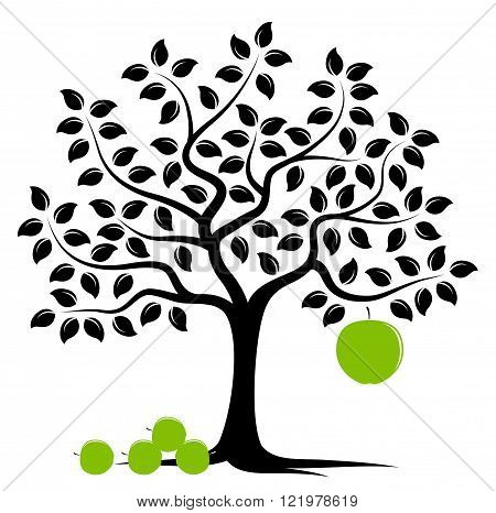 vector apple tree with one big apple and pile of apples isolated on white background